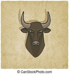 testa, vecchio, fondo, toro