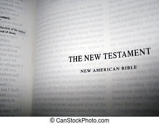 testamento, novo, bíblia