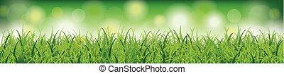 testata, bokeh, erba, sfondo verde