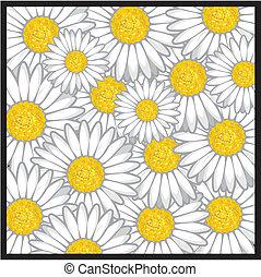 teste padrão flor, margarida