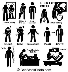 testicular, testicles, próby, rak