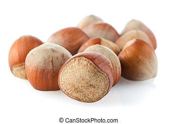 Testy hazelnuts on a white reflective background.