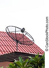 tető, kísérőfogás