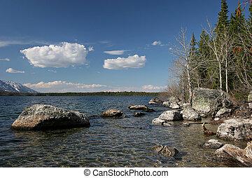 teton, grandiose, rivage, lac jenny