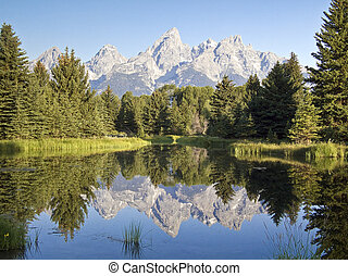 The Cathedral Group of the Grand Teton Range reflected in the waters of Schwabacher's Landing, Grand Teton National Park, Wyoming