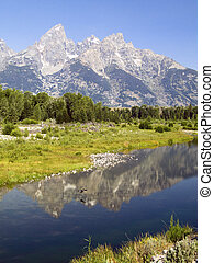 A duck flies over the reflection of the Tetons in the waters of the Snake River at Schwabachers Landing, Grand Teton National Park, Wyoming