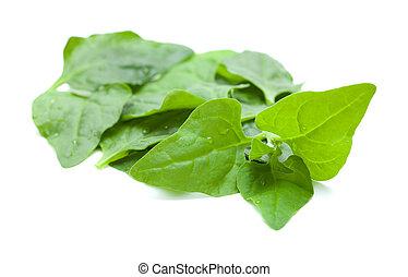Tetragonia tetragonioides, New Zealand spinach, food background