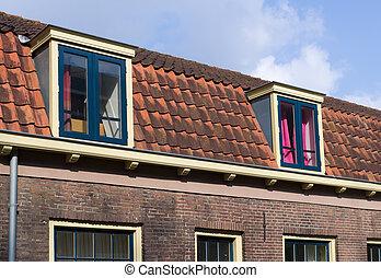 Abbaino windows quadrato tetto olandese tipico foto for Gettare piani dormer