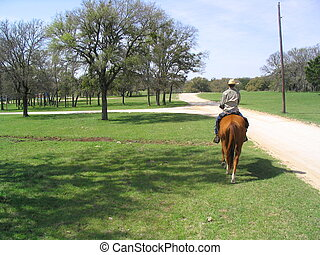 Texan Cowboy - Cowboy rides horse on ranch in central Texas.