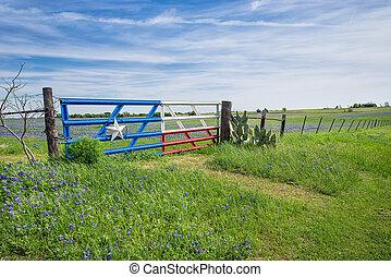 Texas bluebonnet field and fence in spring - Bluebonnet ...