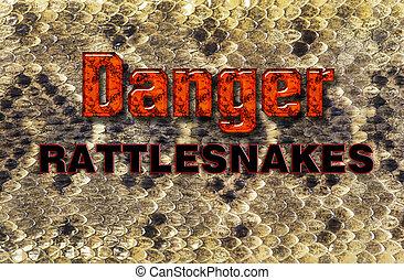Texas diamondback rattlesnake skin will make for great background.
