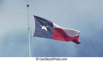 Texas Flag - State of Texas Flag Blowing in the Wind
