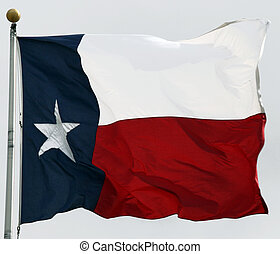Texas Flag - Texas flag flapping in the wind