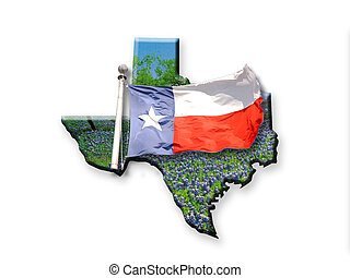 Texas Flag - Texas state flag and flower