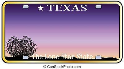 Texas License Plate