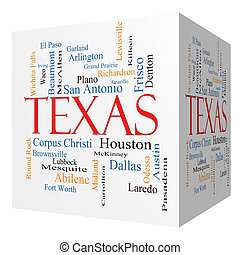Texas State 3D cube Word Cloud Concept with about the 30...