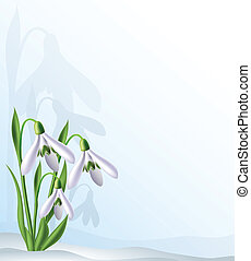 Text background with snowdrops