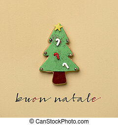 text buon natale, merry christmas in italian - a coloroful...