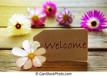 text, cosmea, herzlich willkommen, sonnig, etikett, blüten,...