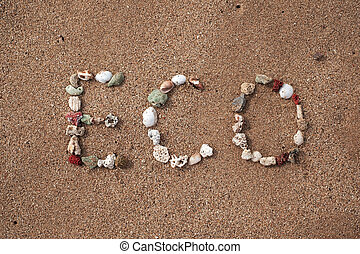 text eco made from shell on sandy beach