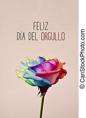 text feliz dia del orgullo, happy gay pride in spanish