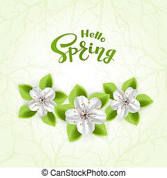 Text Hello Spring and flowers on green background
