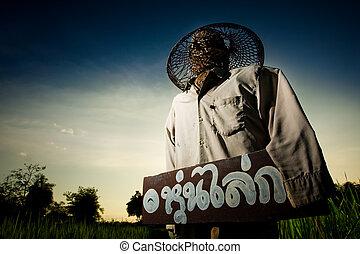 """Scarecrow - Text on the wood said """"Scarecrow"""" in Thai"""