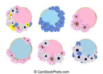 text., printemps, sticker., frames., ensemble, colors., vente, collection, fleurs, endroit, insertion, inscription., couronnes
