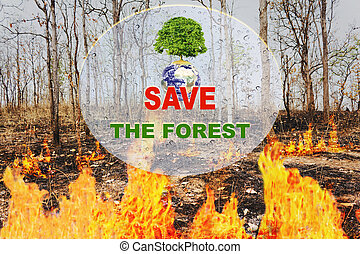 Text save the forest and tree on earth with background of wildfire