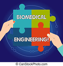 Text sign showing Biomedical Engineering. Conceptual photo advances knowledge biology medicine improves health Four Blank Multi Color Jigsaw Puzzle Tile Pieces Put Together by Human Hands.