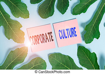 Text sign showing Corporate Culture. Business photo text pervasive values and attitudes that characterize a company Leaves surrounding notepaper above an empty soft pastel table as background