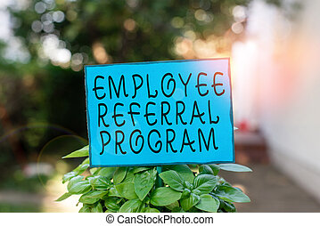 Text sign showing Employee Referral Program. Conceptual photo employees are rewarded for introducing recruits Plain empty paper attached to a stick and placed in the green leafy plants.