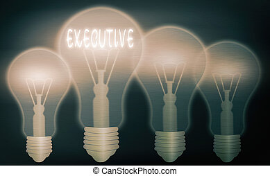Text sign showing Executive. Conceptual photo belonging to ...
