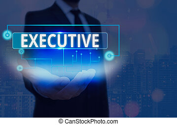 Text sign showing Executive. Business photo text belonging to the branch of government that is charged with powers Information digital technology network connection infographic elements icon
