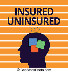 Text sign showing Insured Uninsured. Conceptual photo Company selling insurance Checklist to choose from