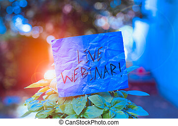 Text sign showing Live Webinar. Conceptual photo presentation lecture or seminar transmitted over Web Plain empty paper attached to a stick and placed in the green leafy plants.