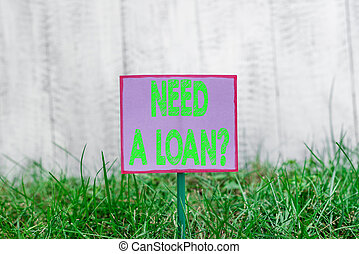 Text sign showing Need A Loan Question. Conceptual photo asking he need money expected paid back with interest Plain empty paper attached to a stick and placed in the green grassy land.