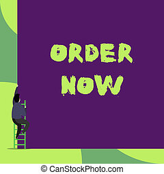 Text sign showing Order Now. Conceptual photo the activity of asking for goods or services from a company Back view young man climbing up staircase ladder lying big blank rectangle.