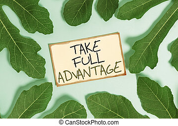 Text sign showing Take Full Advantage. Conceptual photo ...