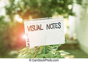 Text sign showing Visual Notes. Conceptual photo process of representing ideas nonlinguistically Sketchnoting Plain empty paper attached to a stick and placed in the green leafy plants.