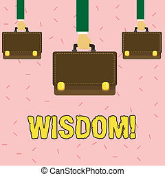 Text sign showing Wisdom. Conceptual photo quality having experience knowledge and good judgement something Three Men Hands Carrying Brown Briefcase with Running Stitch Style and Lock.