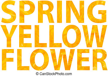 Text SPRING YELLOW FLOWER on background of yelllow dandelion