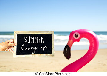 text summer hurry up and flamingo swim ring