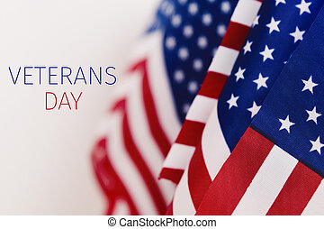 text veterans day and american flags