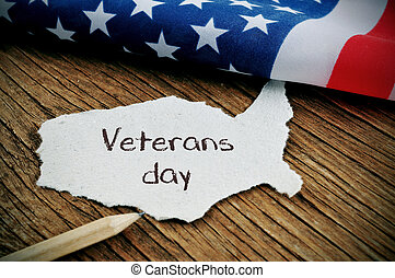 text veterans day and the flag of the US