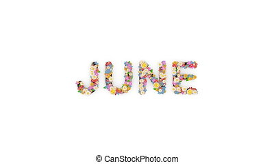 "texte, animation, mois, calendrier, june."", ""floral"