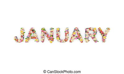"texte, animation, mois, january."", calendrier, ""floral"