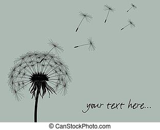 texte, endroit, ton, pissenlit