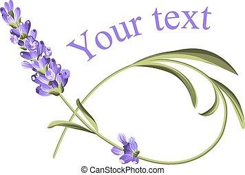 texte, ton, template.