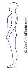 textilfreie , stehende , mann